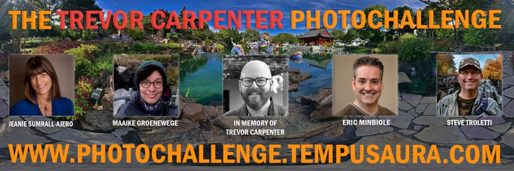 The Trevor Carpenter Photochallenge